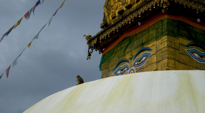 A monkey resting on the dome of Swayambhunath Temple