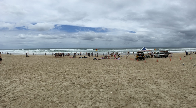 Day 3: Surfer's Paradise