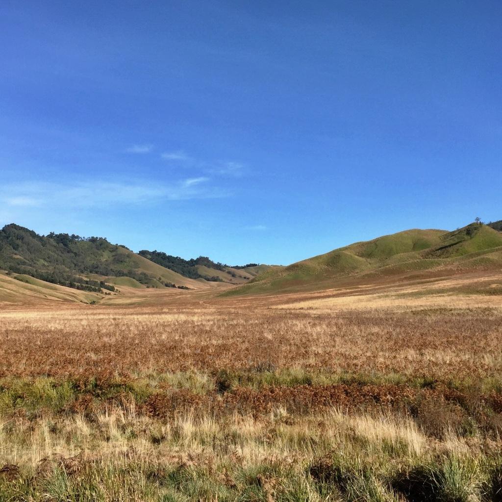 Teletubbies hills