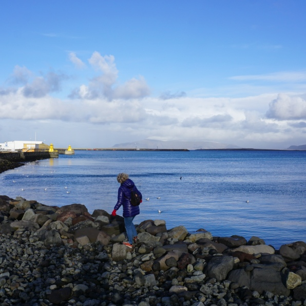 A day around Reykjavik